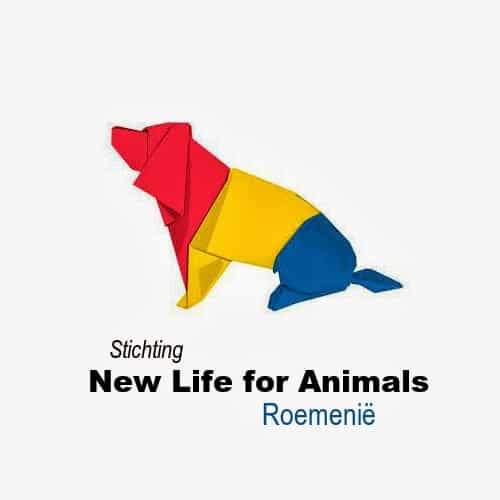 Stichting-New-Life-for-Animals-Roemenië-Wit